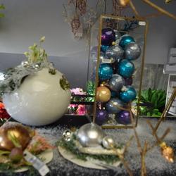 Falenopsis - Kerst 2017